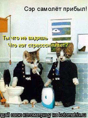 Котоматрица: Сэр самолёт прибыл!! Ты что не видишь  Что кот стрессснимает?