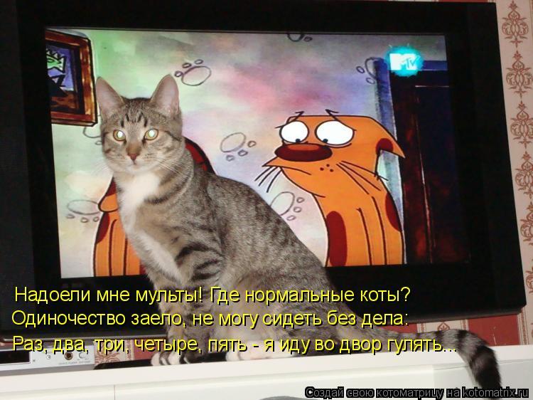 Котоматрица: Надоели мне мульты! Где нормальные коты? Одиночество заело, не могу сидеть без дела: Раз, два, три, четыре, пять - я иду во двор гулять...