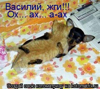 Котоматрица: Василий, жги!!!  Ох... ах... а-ах