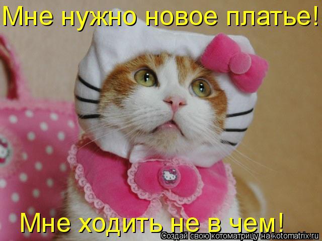Котоматрица: Мне нужно новое платье! Мне ходить не в чем!