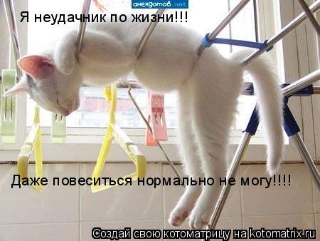 Котоматрица: Я неудачник по жизни!!! Даже повеситься нормально не могу!!!!