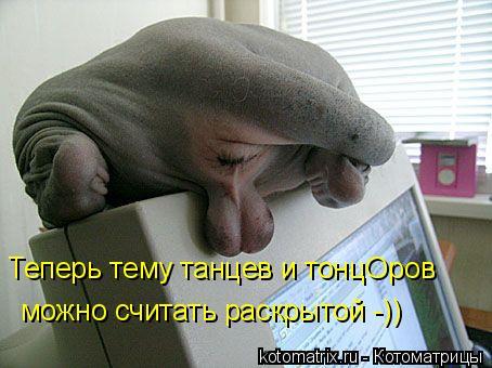Котоматрица: Теперь тему танцев и тонцОров   можно считать раскрытой -))