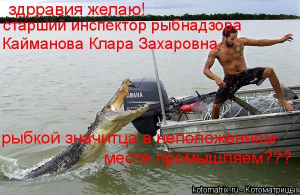 Котоматрица: здрравия желаю! старший инспектор рыбнадзора Кайманова Клара Захаровна рыбкой значитца в неположенном  месте промышляем???