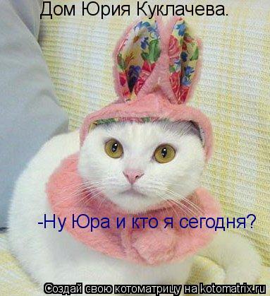 Котоматрица: Дом Юрия Куклачева. -Ну Юра и кто я сегодня?