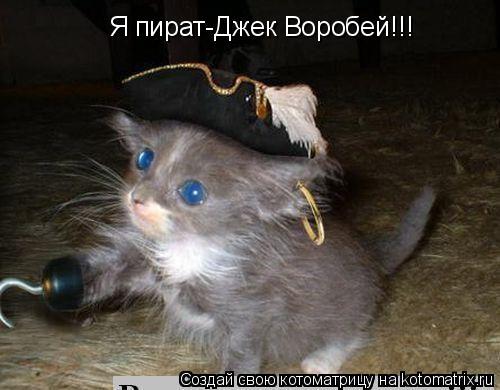 Котоматрица: Я пират-Джек Воробей!!!
