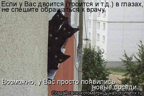 Котоматрица: Если у Вас двоится (троится и т.д.) в глазах, не спешите обращаться к врачу.  Возможно, у Вас просто появились  новые соседи.