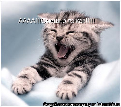 Котоматрица: АААА!!!Смешно то как!!!!!