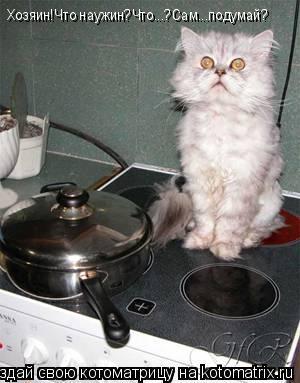 Котоматрица: Хозяин!Что наужин?Что...?Сам...подумай?