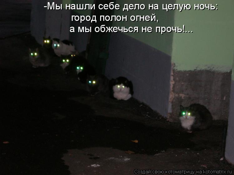 Котоматрица: -Мы нашли себе дело на целую ночь: город полон огней, а мы обжечься не прочь!...