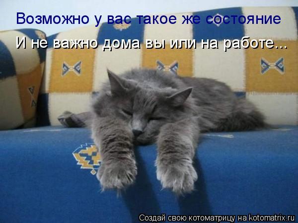 Котоматрица: Возможно у вас такое же состояние И не важно дома вы или на работе...