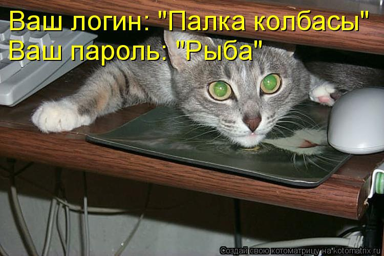 "Котоматрица: Ваш логин: ""Палка колбасы"" Ваш пароль: ""Рыба"""