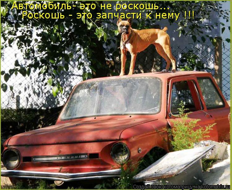 Котоматрица: Автомобиль- это не роскошь... Роскошь - это запчасти к нему !!!