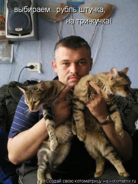 Котоматрица: выбираем...рубль штучка, на три-кучка!