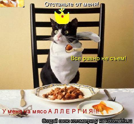 Котоматрица: Отстаньте от меня! Все равно не съем! У меня на мясо А Л Л Е Р Г И Я!!!