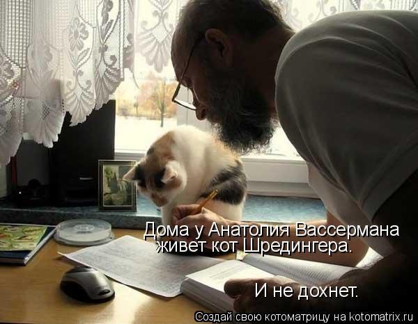 Котоматрица: Дома у Анатолия Вассермана  живет кот Шредингера.  И не дохнет.