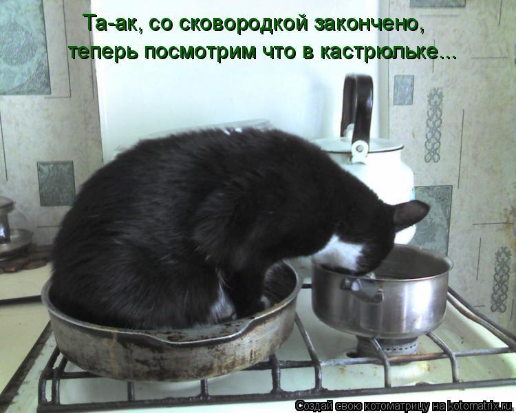 Котоматрица: Та-ак, со сковородкой закончено,  теперь посмотрим что в кастрюльке...