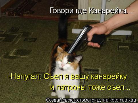 Котоматрица: Говори где Канарейка... -Напугал. Съел я вашу канарейку и патроны тоже съел...