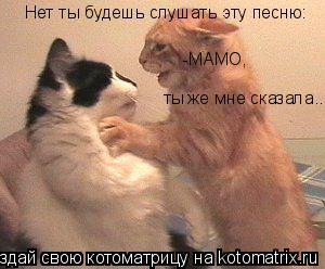 Котоматрица: Нет ты будешь слушать эту песню: -МАМО,  ты же мне сказала..