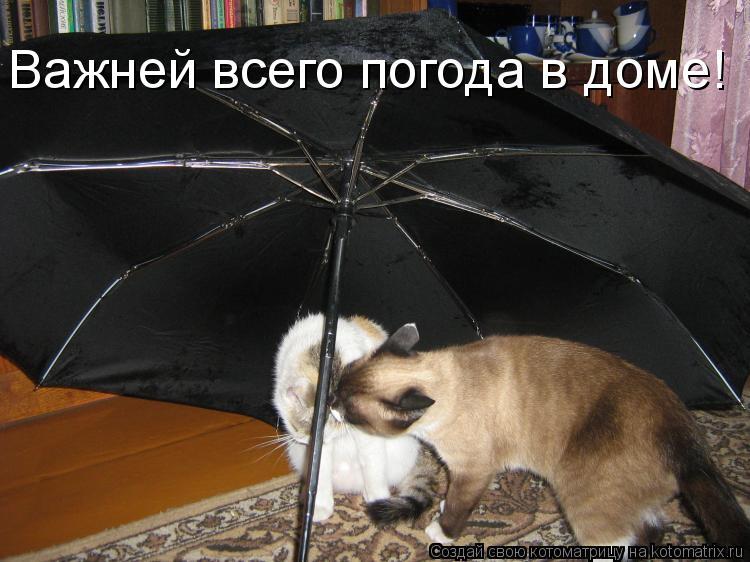 Главней всего погода в доме поздравление с