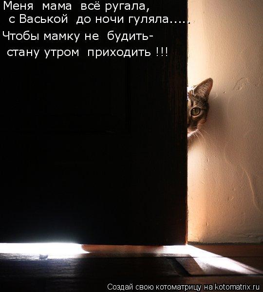 Котоматрица: Меня  мама  всё ругала,  с Васькой  до ночи гуляла..... Чтобы мамку не  будить- стану утром  приходить !!!