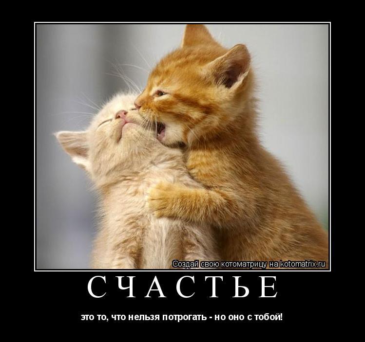 Котоматрица: счастье это то, что нельзя потрогать - но оно с тобой!