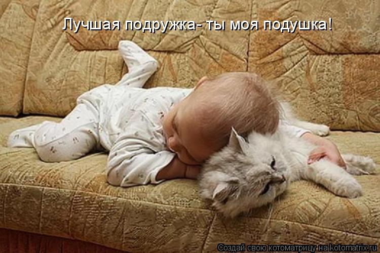 Котоматрица: Лучшая подружка- ты моя подушка!