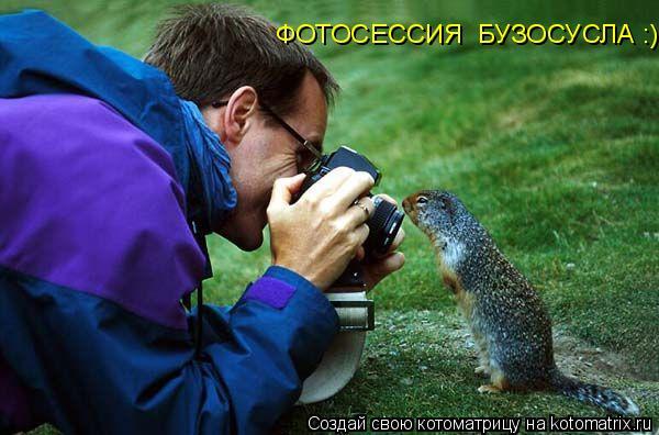 Котоматрица: ФОТОСЕССИЯ  БУЗОСУСЛА :)