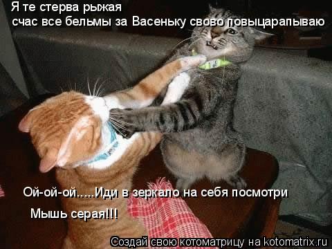 Котоматрица: Я те стерва рыжая  счас все бельмы за Васеньку свово повыцарапываю Ой-ой-ой.....Иди в зеркало на себя посмотри Мышь серая!!!