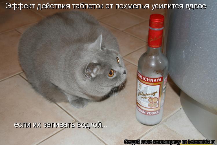 Котоматрица: Эффект действия таблеток от похмелья усилится вдвое если их запивать водкой...