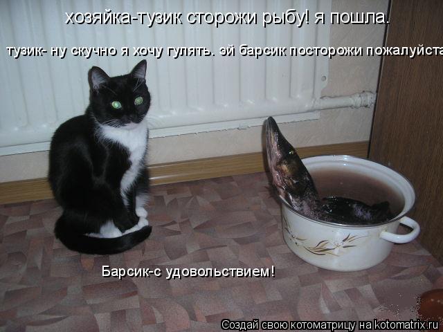 Котоматрица: хозяйка-тузик сторожи рыбу! я пошла. тузик- ну скучно я хочу гулять. эй барсик посторожи пожалуйста Барсик-с удовольствием!
