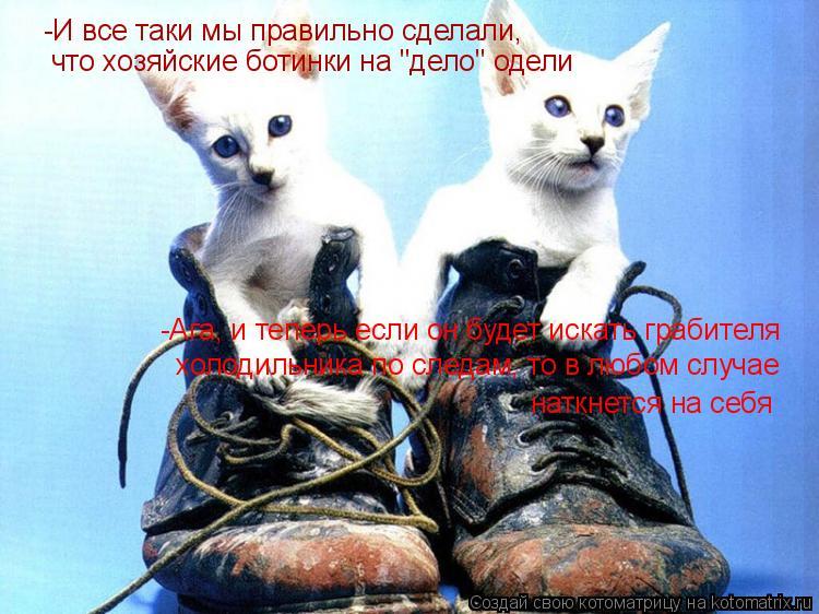 """Котоматрица: -И все таки мы правильно сделали, что хозяйские ботинки на """"дело"""" одели -Ага, и теперь если он будет искать грабителя  холодильника по следам,"""