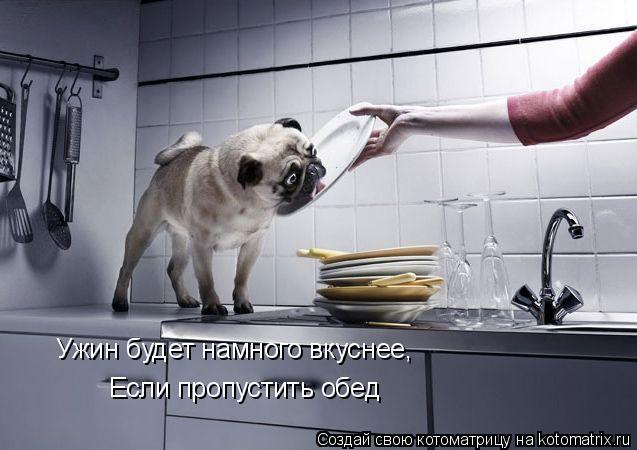 Котоматрица: Ужин будет намного вкуснее, Если пропустить обед