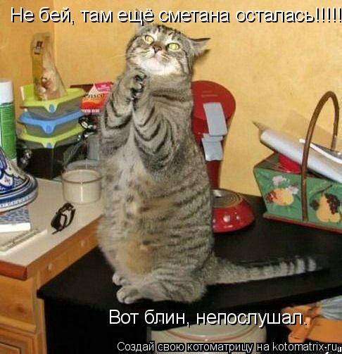 Котоматрица: Не бей, там ещё сметана осталась!!!!! Вот блин, непослушал.