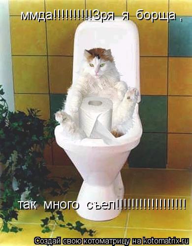 Котоматрица: ммда!!!!!!!!!!Зря  я  борща ,  так  много  съел!!!!!!!!!!!!!!!!!!