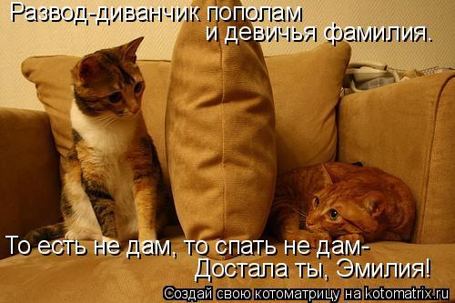 Котоматрица: Развод-диванчик пополам  и девичья фамилия. То есть не дам, то спать не дам- Достала ты, Эмилия!