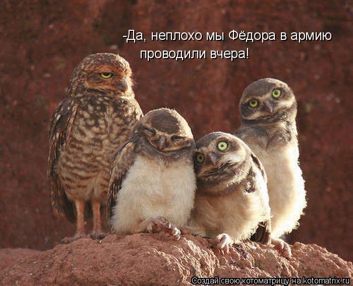 Котоматрица: -Да, неплохо мы Фёдора в армию  проводили вчера!