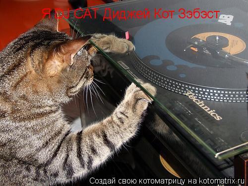 Котоматрица: Я DJ CAT Диджей Кот Зэбэст