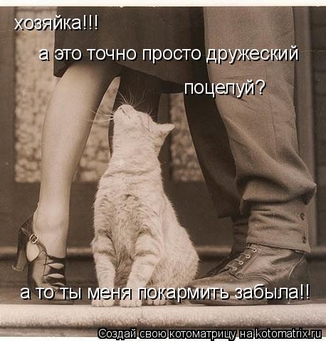 Котоматрица: хозяйка!!! а это точно просто дружеский поцелуй? а то ты меня покармить забыла!!