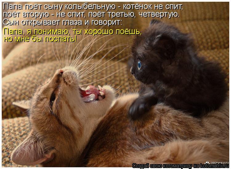 Котоматрица: Папа поёт сыну колыбельную - котёнок не спит, поёт вторую - не спит, поёт третью, четвертую. Сын открывает глаза и говорит: Папа, я понимаю, ты