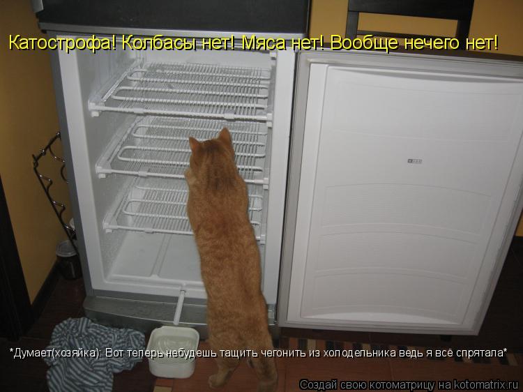 Котоматрица: *Думает(хозяйка): Вот теперь небудешь тащить чегонить из холодельника ведь я всё спрятала* Катострофа! Колбасы нет! Мяса нет! Вообще нечего н
