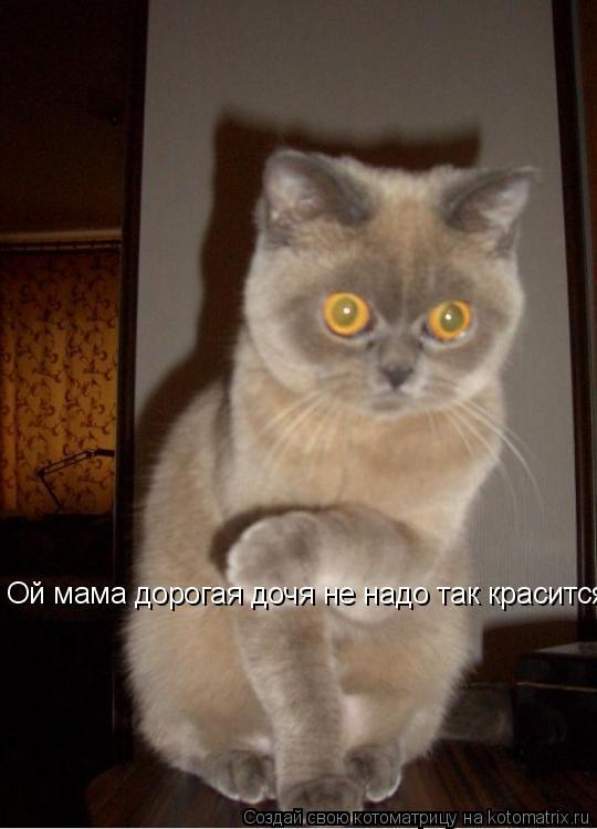 Котоматрица: Ой мама дорогая дочя не надо так красится я чуть в обморок не упала!... Ой мама дорогая дочя не надо так красится я чуть в обморок не упала!...