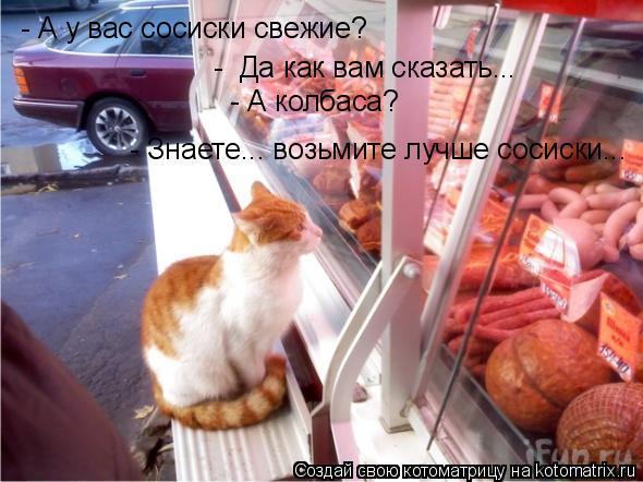 Котоматрица: - А у вас сосиски свежие?  -  Да как вам сказать...  - А колбаса?  - Знаете... возьмите лучше сосиски...