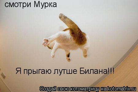 Котоматрица: смотри Мурка Я прыгаю лутше Билана!!!