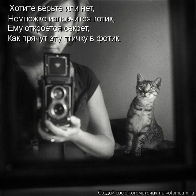 Котоматрица: Хотите верьте или нет, Немножко изловчится котик, Ему откроется секрет, Как прячут эту птичку в фотик.