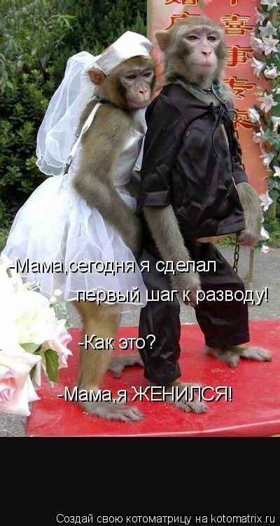 Котоматрица: -Мама,сегодня я сделал  первый шаг к разводу!  -Как это?  -Мама,я ЖЕНИЛСЯ!
