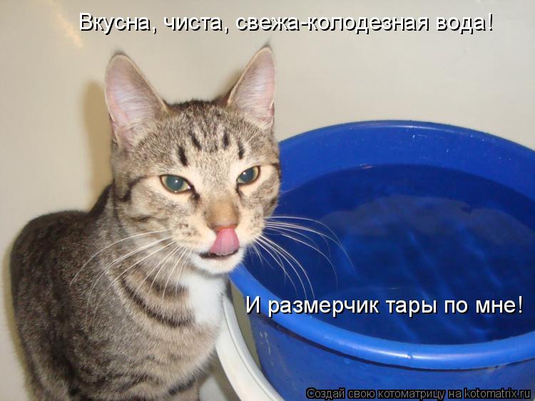 Котоматрица: Вкусна, чиста, свежа-колодезная вода! И размерчик тары по мне!