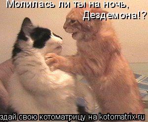Котоматрица: Молилась ли ты на ночь, Дездемона!?