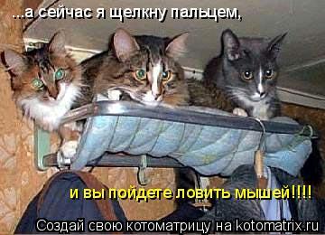 Котоматрица: ...а сейчас я щелкну пальцем, и вы пойдете ловить мышей!!!!