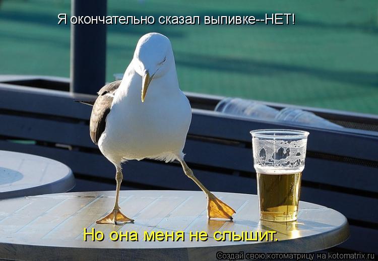 Котоматрица: Я окончательно сказал выпивке--НЕТ! Но она меня не слышит.