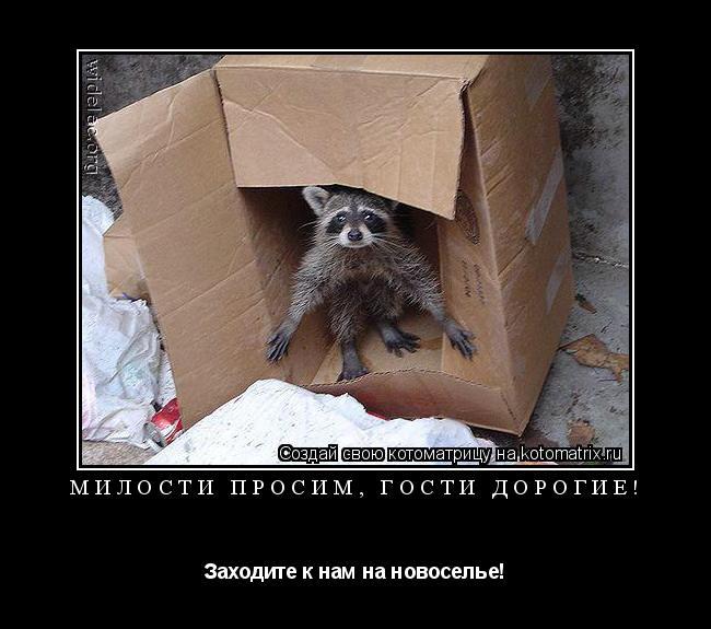 http://kotomatrix.ru/images/lolz/2009/05/21/R8.jpg